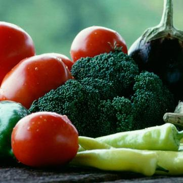 povrce1