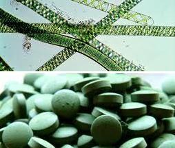 Sprilulina i tablete od nje