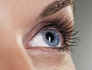 oko-vid-hrana