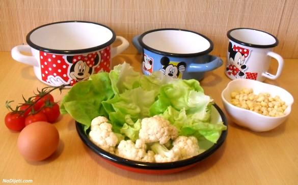 salata p1
