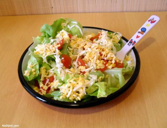 salata p6