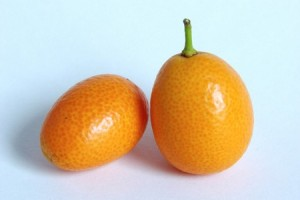 voce-japanska-pomorandza