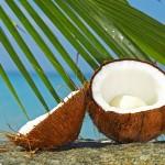 Kokos: od oraha, vode, mleka i brašna do ulja