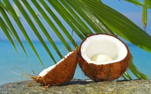 kokosov_orah